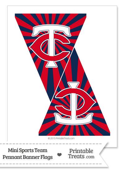 Minnesota Twins Mini Pennant Banner Flags from PrintableTreats.com