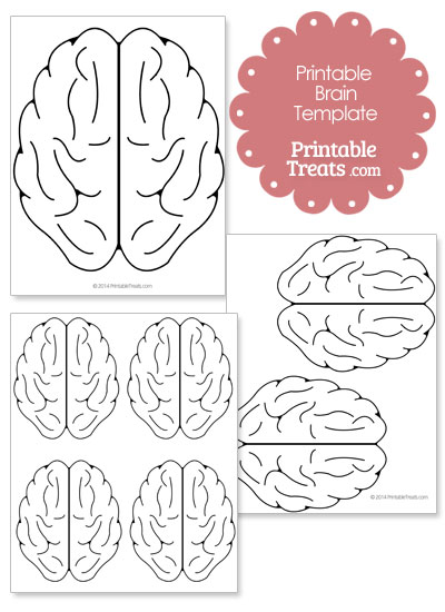 Printable Brain Template from PrintableTreats.com
