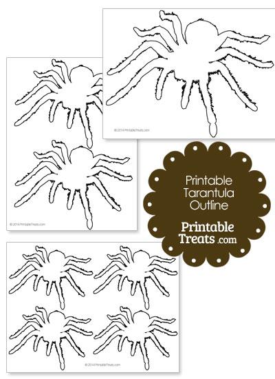 Printable Tarantula Outline from PrintableTreats.com