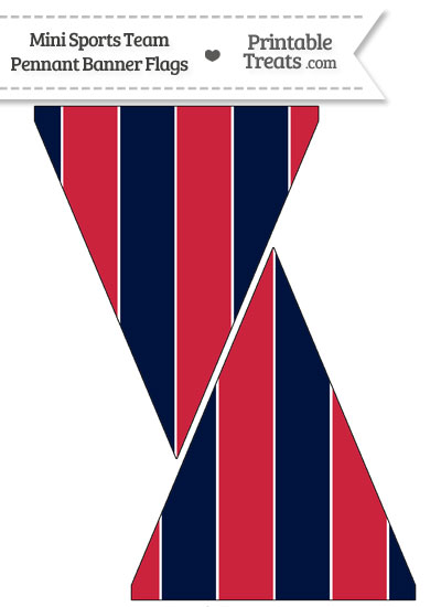 Texans Colors Mini Pennant Banner Flags from PrintableTreats.com