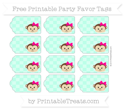 Free Aquamarine Checker Pattern Girl Monkey Party Favor Tags