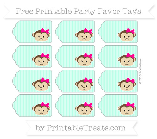 Free Aquamarine Thin Striped Pattern Girl Monkey Party Favor Tags