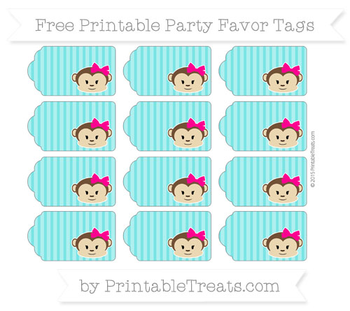 Free Robin Egg Blue Thin Striped Pattern Girl Monkey Party Favor Tags